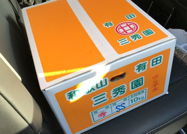 和歌山 有田みかん 箱買い